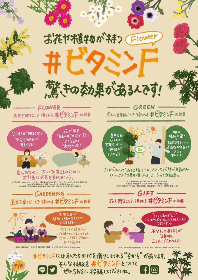 【完成】#ビタミンFチラシHONOKA
